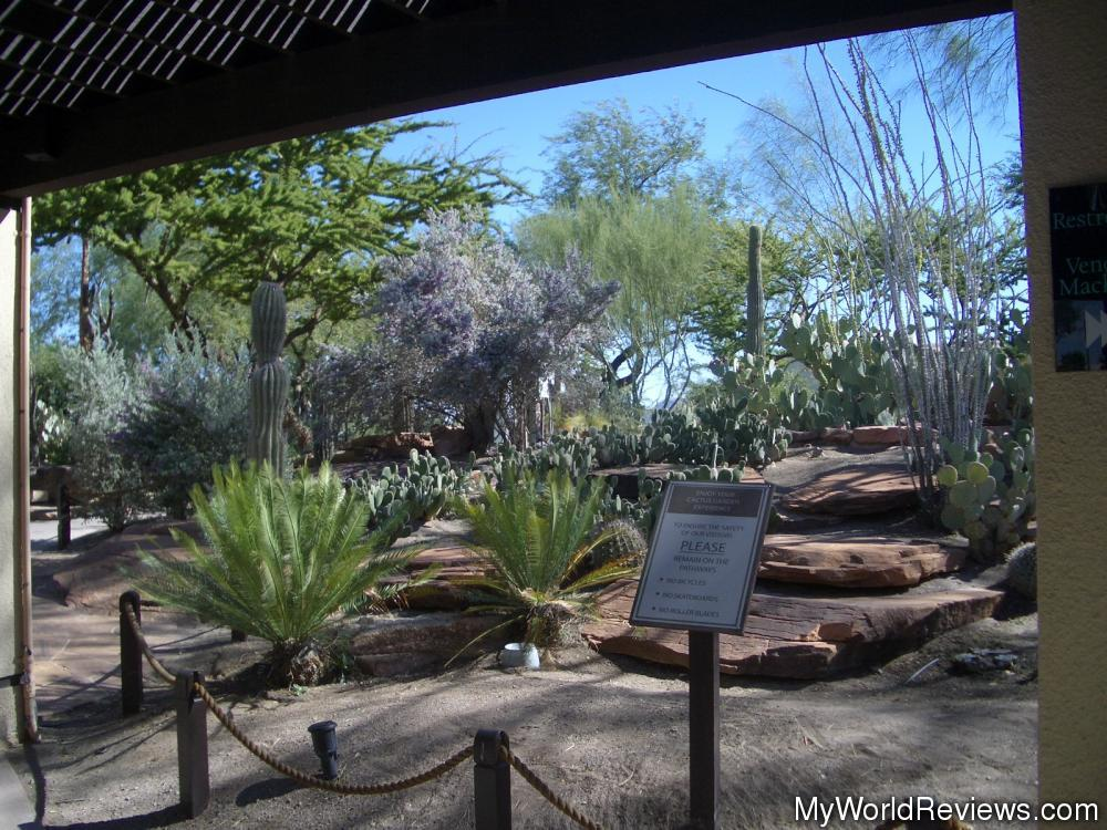 Review Of Ethel M Botanical Cactus Gardens At