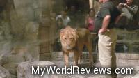 Lion and Trainers