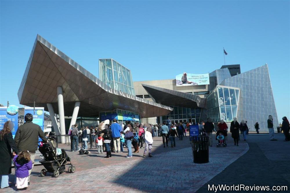 Review Of New England Aquarium At