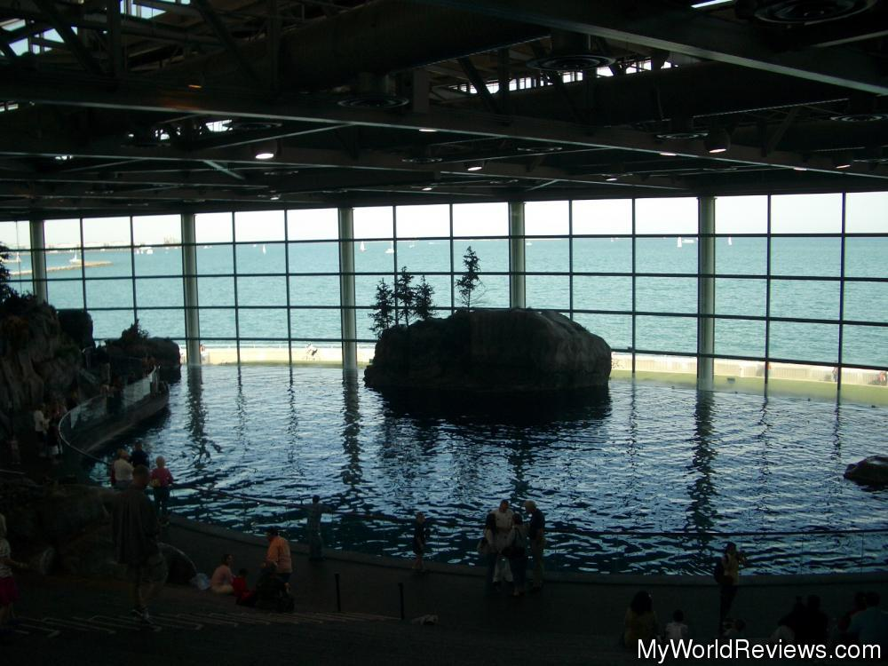 a report from a visit in the sheds aquarium in chicago Here are tips for an easy visit to the shedd including ticket tips, how to get here   on winter weekends and busy weekdays, weather in chicago is unpredictable,.